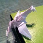 Phoenix Origami - Side shot